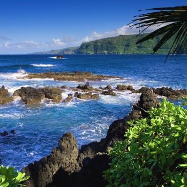Apartamentos Bons e Baratos para Alugar em Mauí no Havai