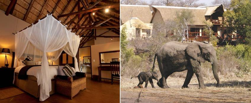 Elephant Plains Game Lodge em Kruger Park