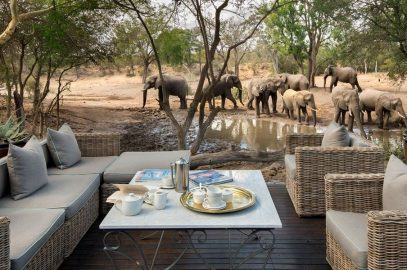 15 Lodges com Safari no Kruger Park na África do Sul