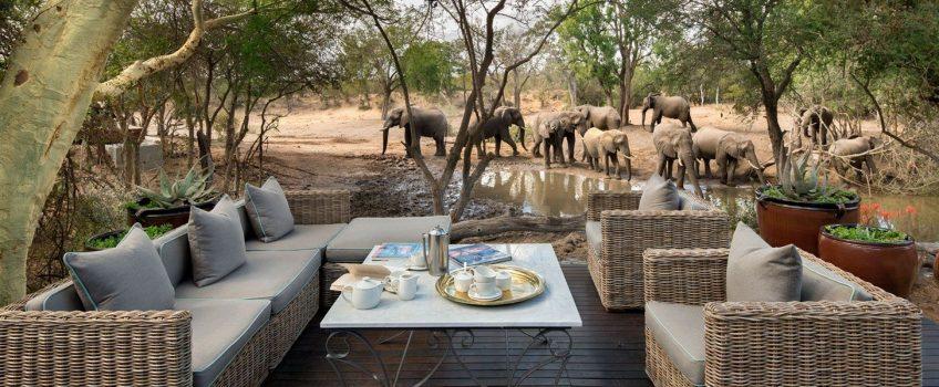 15 Lodges com Safari no Kruger Park na África do Sul