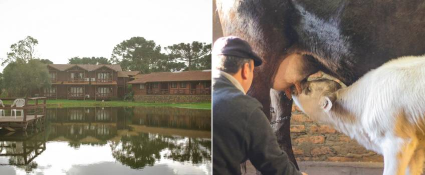 Hotéis Fazenda SC: Boqueirão